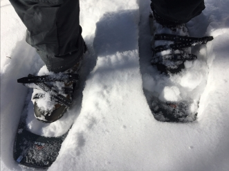 Snowshoeing Middlesex Fells